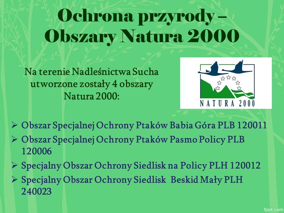  Obszar Specjalnej Ochrony Ptaków Babia Góra PLB 120011  Obszar Specjalnej Ochrony Ptaków Pasmo Policy PLB 120006  Specjalny Obszar Ochrony Siedlisk na Policy PLH 120012  Specjalny Obszar Ochrony Siedlisk Beskid Mały PLH 240023 Ochrona przyrody – Obszary Natura 2000 Na terenie Nadleśnictwa Sucha utworzone zostały 4 obszary Natura 2000:
