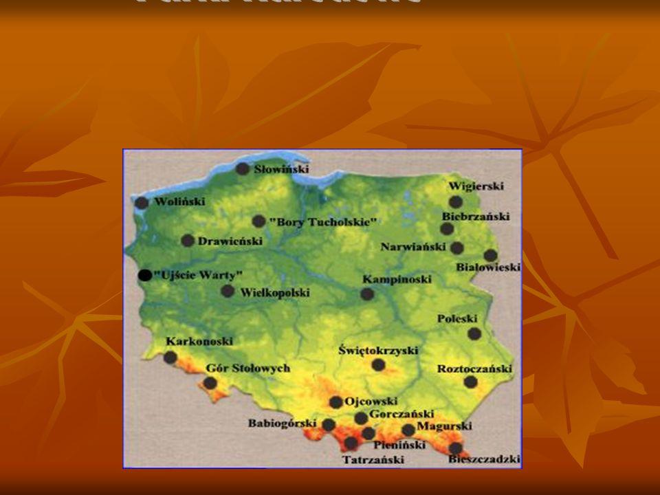 Babiogórski Park Narodowy Położenie, powierzchnia, historia Położenie, powierzchnia, historia Babiogórski Park Narodowy znajduje się w południowej części kraju w województwie małopolskim, przy granicy Polski ze Słowacją.