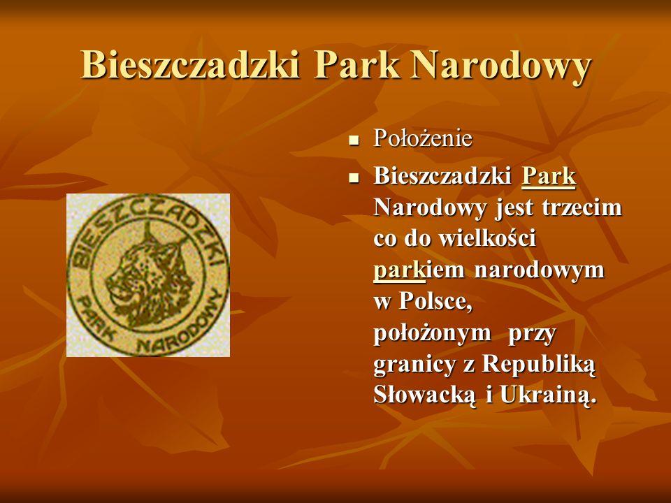 Bieszczadzki Park Narodowy Położenie Położenie Bieszczadzki Park Narodowy jest trzecim co do wielkości parkiem narodowym w Polsce, położonym przy granicy z Republiką Słowacką i Ukrainą.