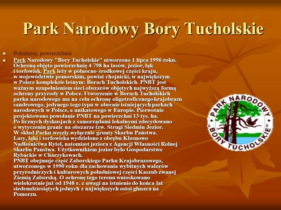 Park Narodowy Bory Tucholskie Położenie, powierzchnia Położenie, powierzchnia Park Narodowy Bory Tucholskie utworzono 1 lipca 1996 roku.