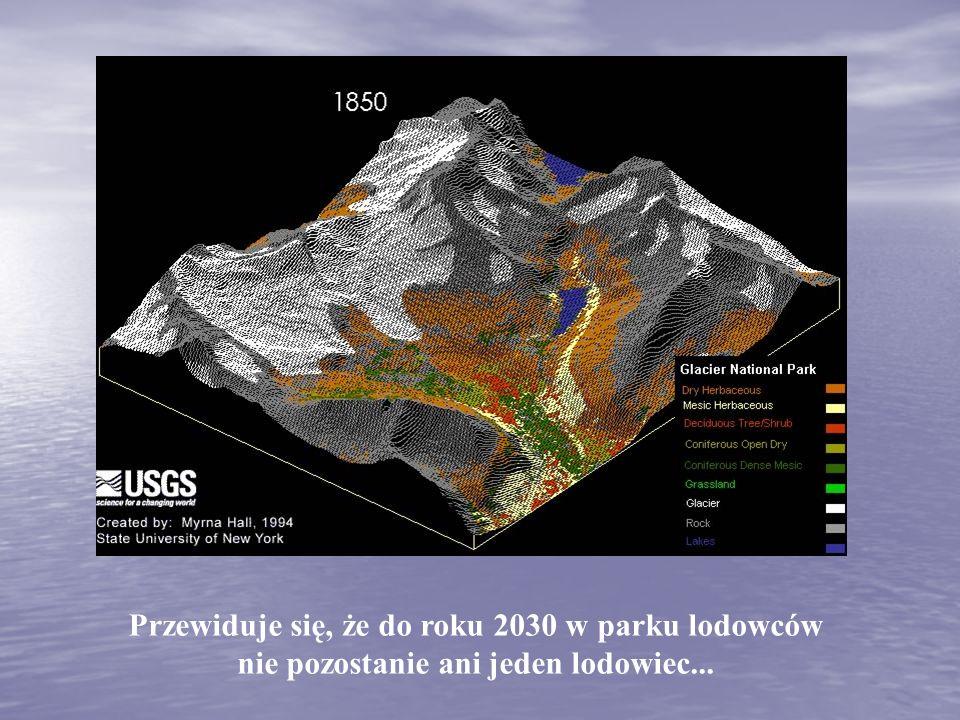 Przewiduje się, że do roku 2030 w parku lodowców nie pozostanie ani jeden lodowiec...