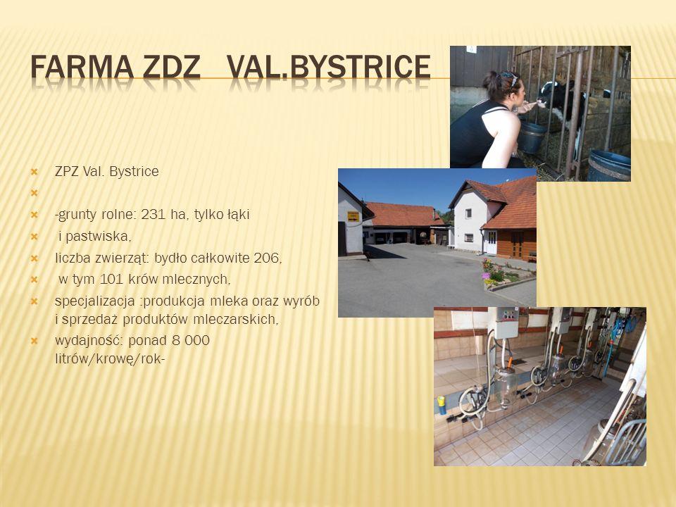  ZPZ Val. Bystrice   -grunty rolne: 231 ha, tylko łąki  i pastwiska,  liczba zwierząt: bydło całkowite 206,  w tym 101 krów mlecznych,  specjal