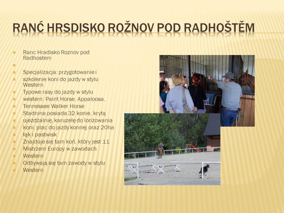  Ranc Hradisko Roznov pod Radhostem   Specjalizacja: przygotowanie i  szkolenie koni do jazdy w stylu Western  Typowe rasy do jazdy w stylu  wes
