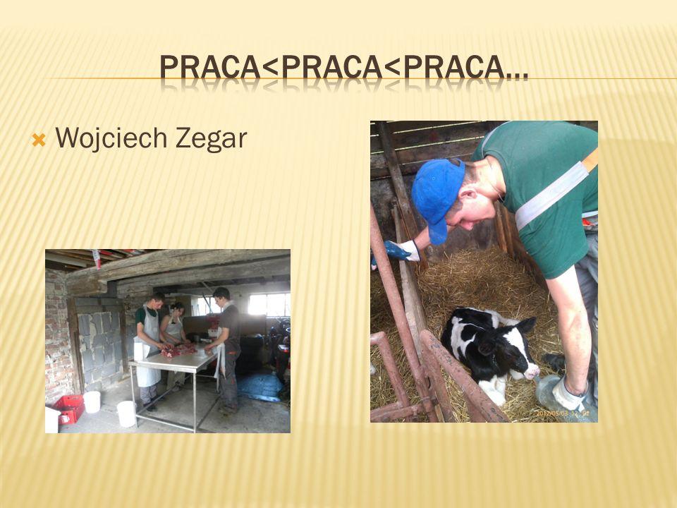  Wojciech Zegar