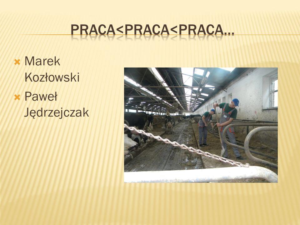  Marek Kozłowski  Paweł Jędrzejczak