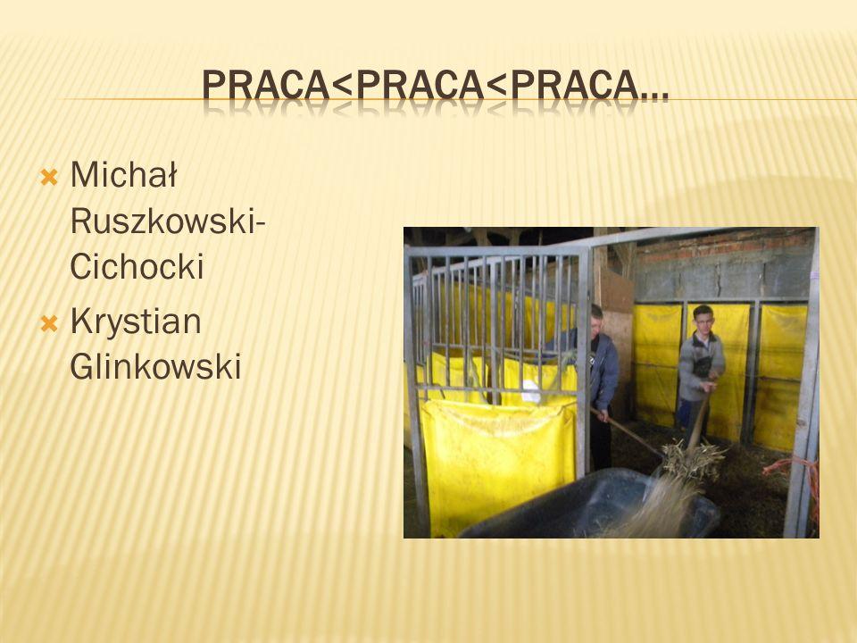  Michał Ruszkowski- Cichocki  Krystian Glinkowski