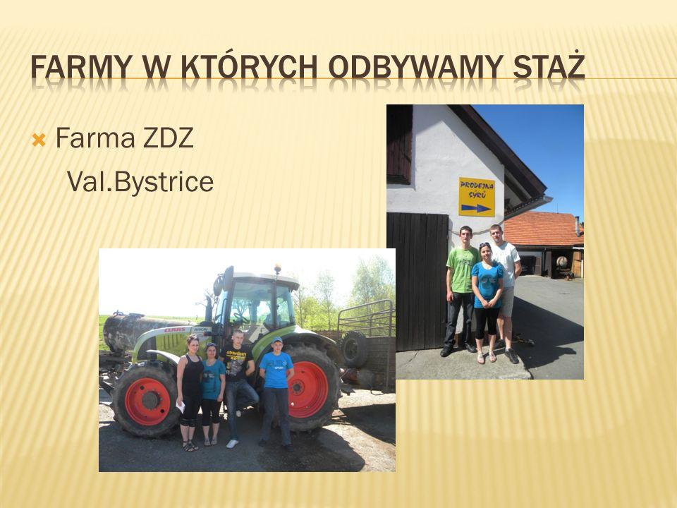  Farma ZDZ Val.Bystrice