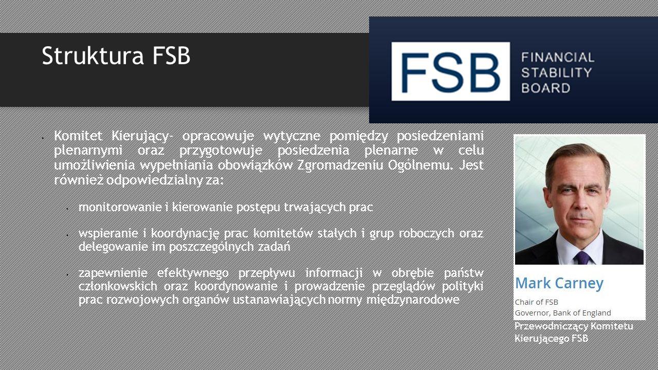 Struktura FSB Komitet Kierujący- opracowuje wytyczne pomiędzy posiedzeniami plenarnymi oraz przygotowuje posiedzenia plenarne w celu umożliwienia wypełniania obowiązków Zgromadzeniu Ogólnemu.