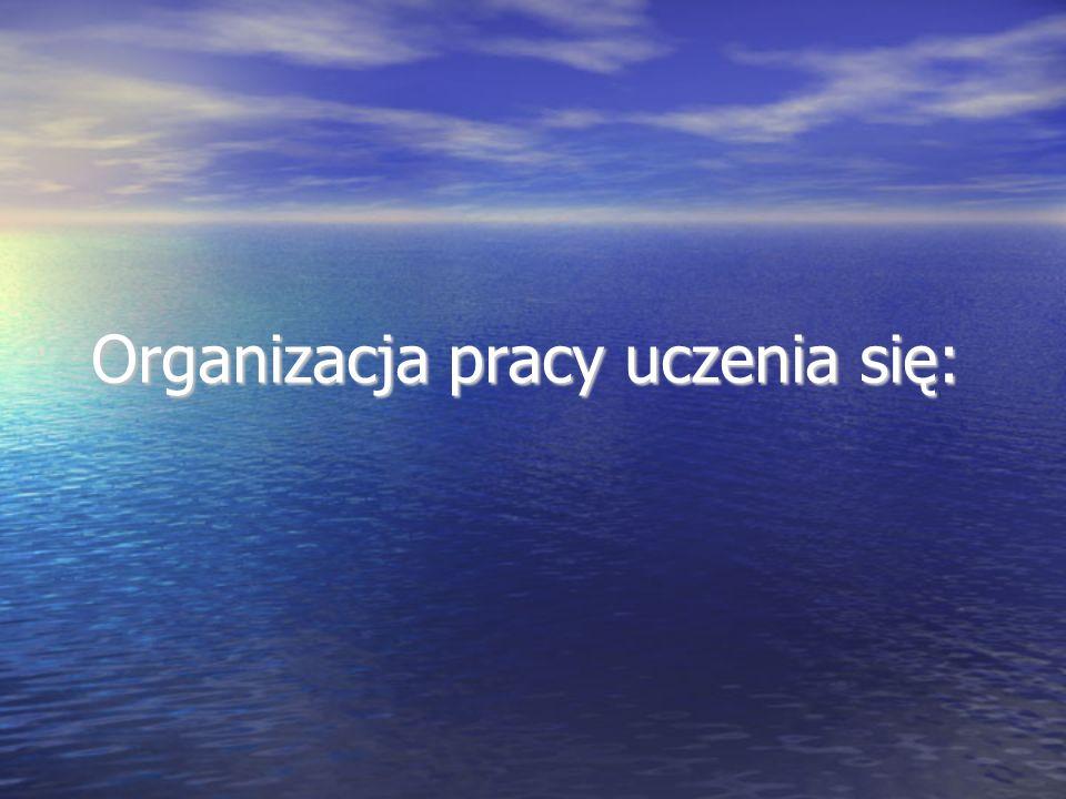 Organizacja pracy uczenia się: