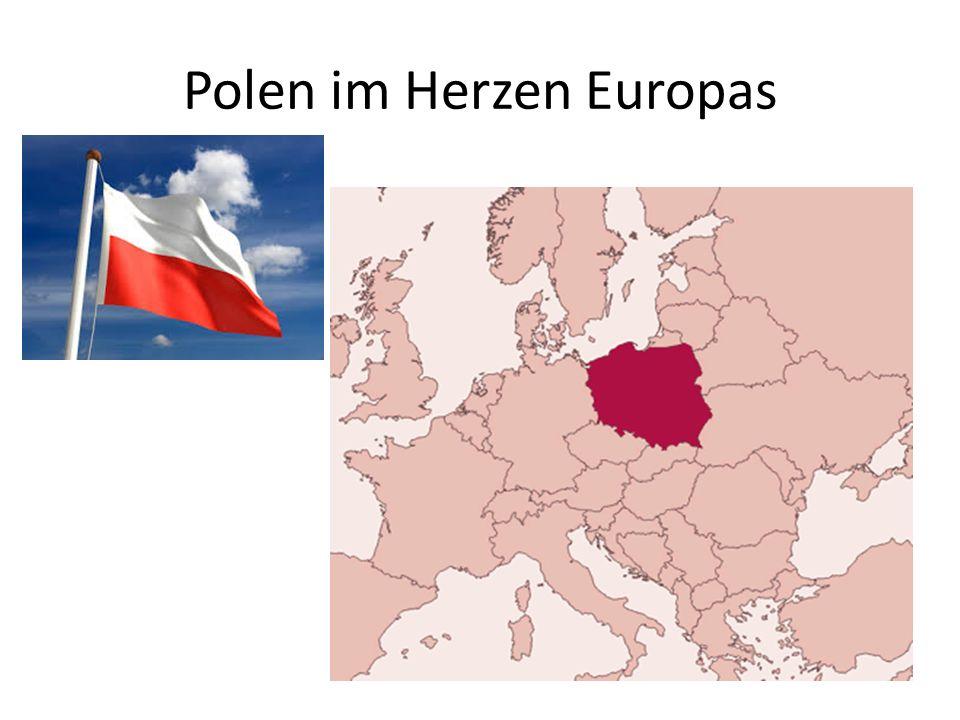 Ablauf 1.Vorstellungsrunde 2.Quiz zu Polen 3.Kurzfilme zu Polen & WJT & Krakau 4.Kleiner Polnisch Kurs