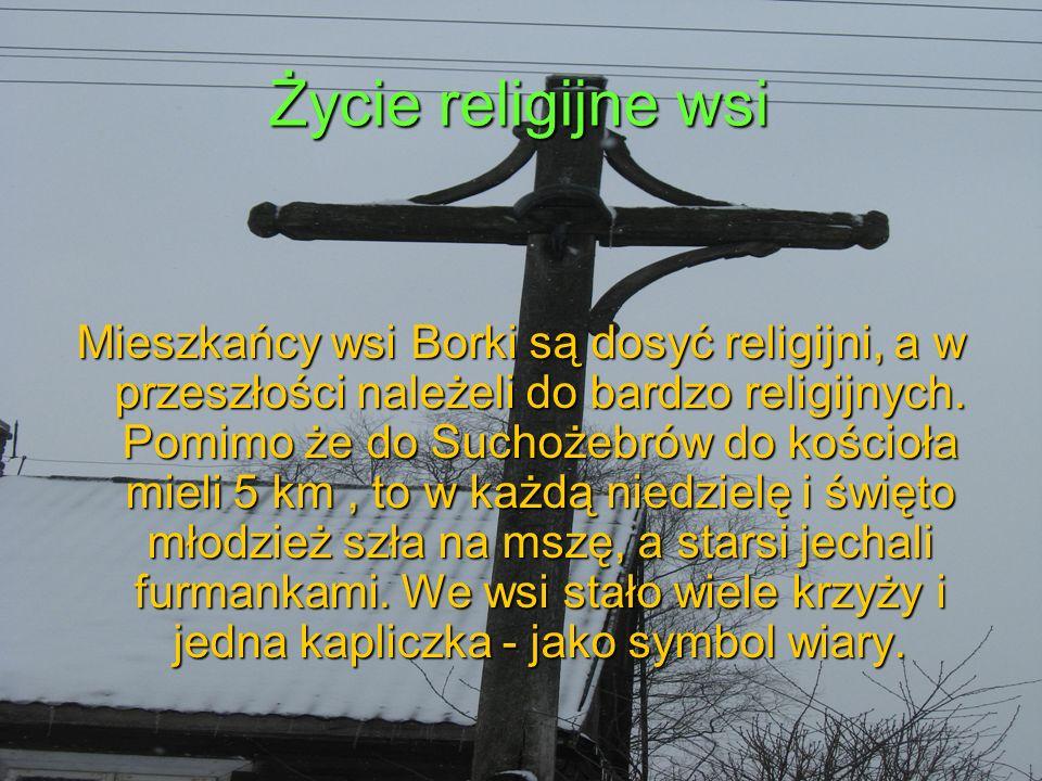 Życie religijne wsi Mieszkańcy wsi Borki są dosyć religijni, a w przeszłości należeli do bardzo religijnych.