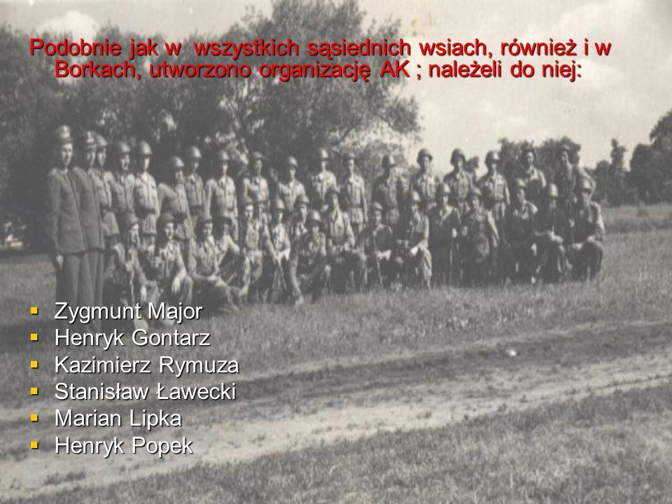 Podobnie jak w wszystkich sąsiednich wsiach, również i w Borkach, utworzono organizację AK ; należeli do niej:  Zygmunt Major  Henryk Gontarz  Kazimierz Rymuza  Stanisław Ławecki  Marian Lipka  Henryk Popek