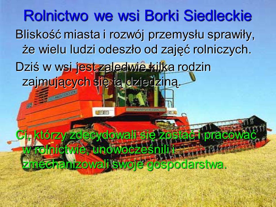 Rolnictwo we wsi Borki Siedleckie Bliskość miasta i rozwój przemysłu sprawiły, że wielu ludzi odeszło od zajęć rolniczych.