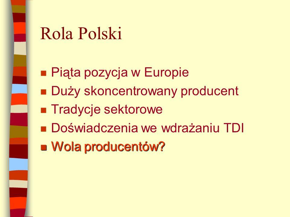 Rola Polski n Piąta pozycja w Europie n Duży skoncentrowany producent n Tradycje sektorowe n Doświadczenia we wdrażaniu TDI n Wola producentów