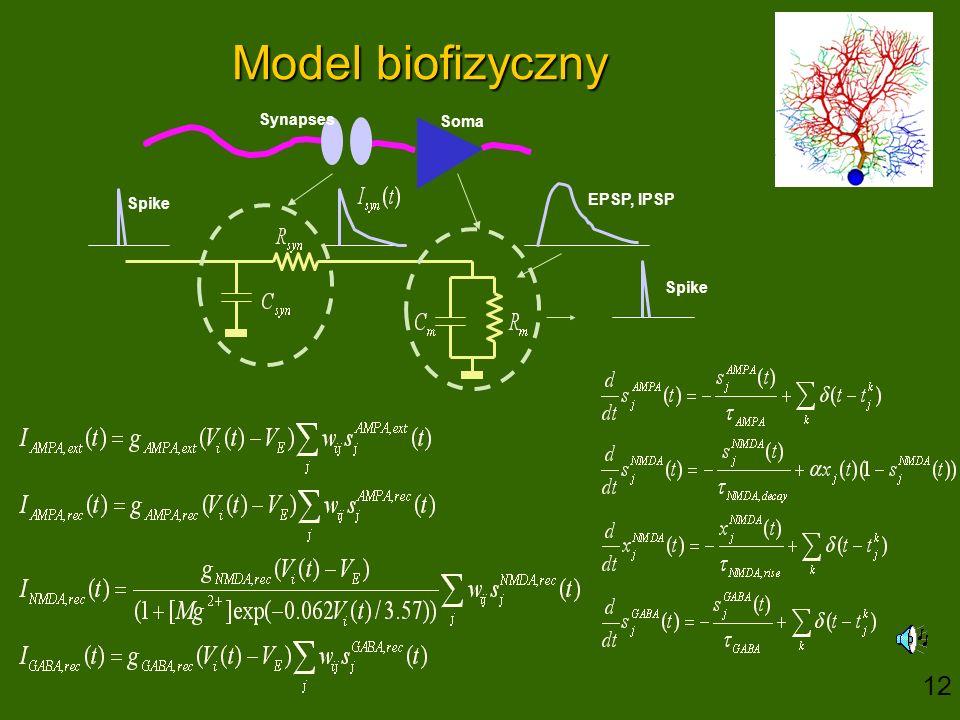 Model biofizyczny EPSP, IPSP Spike Soma Synapses 12