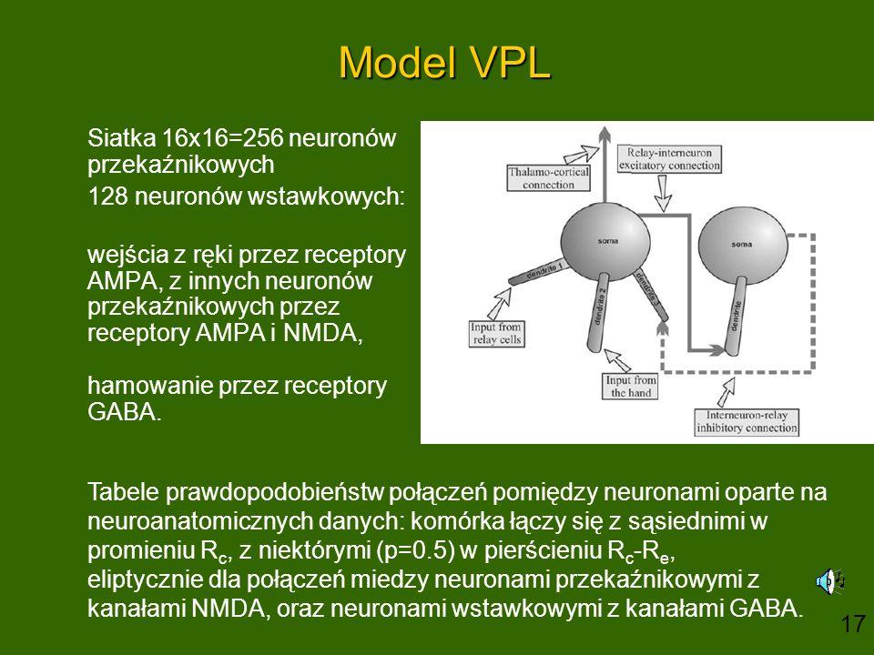 Model VPL Siatka 16x16=256 neuronów przekaźnikowych 128 neuronów wstawkowych: wejścia z ręki przez receptory AMPA, z innych neuronów przekaźnikowych przez receptory AMPA i NMDA, hamowanie przez receptory GABA.