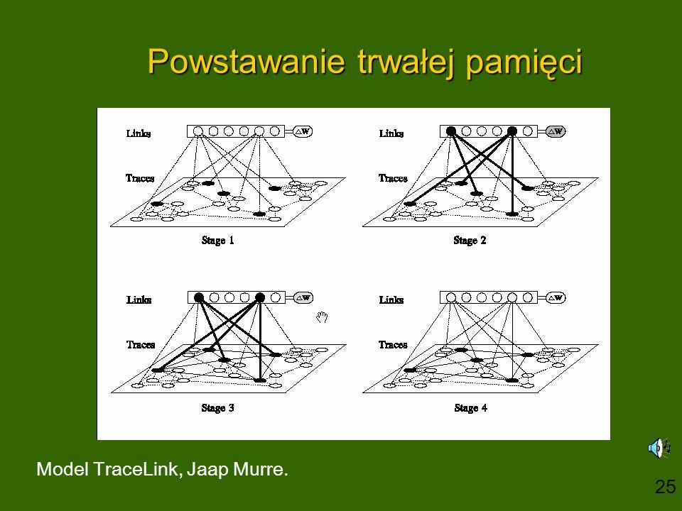 Powstawanie trwałej pamięci Model TraceLink, Jaap Murre. 25