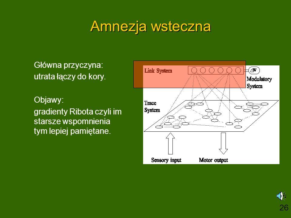 Amnezja wsteczna Główna przyczyna: utrata łączy do kory.
