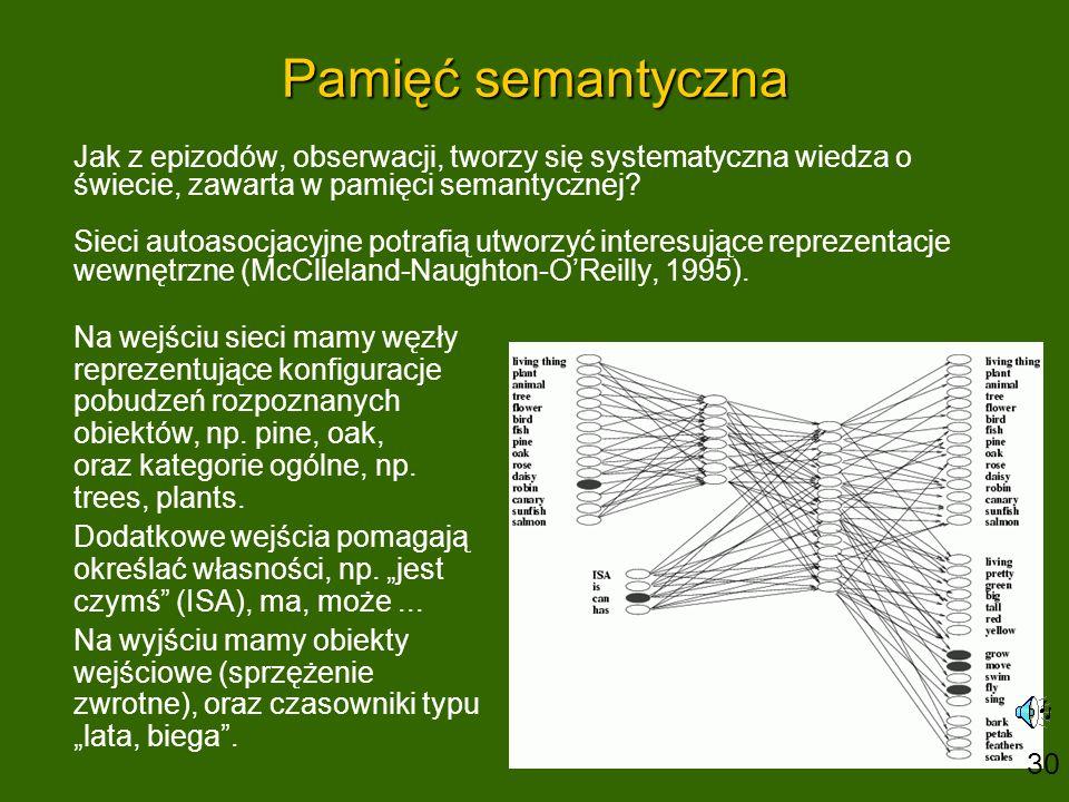 Pamięć semantyczna Jak z epizodów, obserwacji, tworzy się systematyczna wiedza o świecie, zawarta w pamięci semantycznej? Sieci autoasocjacyjne potraf