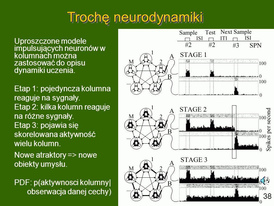 Trochę neurodynamiki Uproszczone modele impulsujących neuronów w kolumnach można zastosować do opisu dynamiki uczenia.