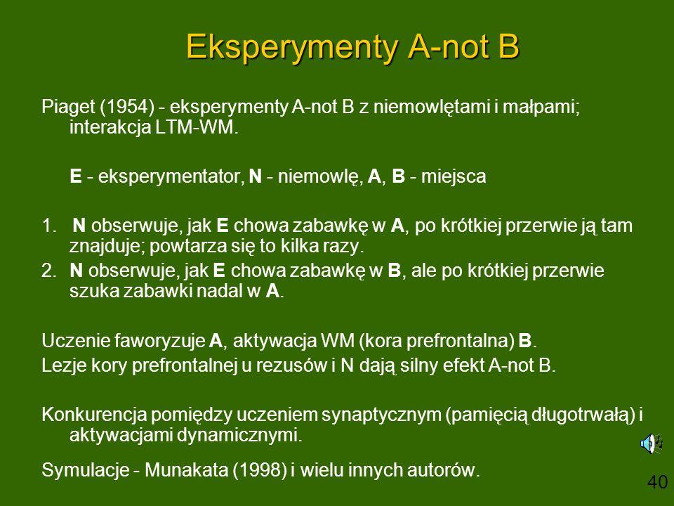 Eksperymenty A-not B Piaget (1954) - eksperymenty A-not B z niemowlętami i małpami; interakcja LTM-WM.