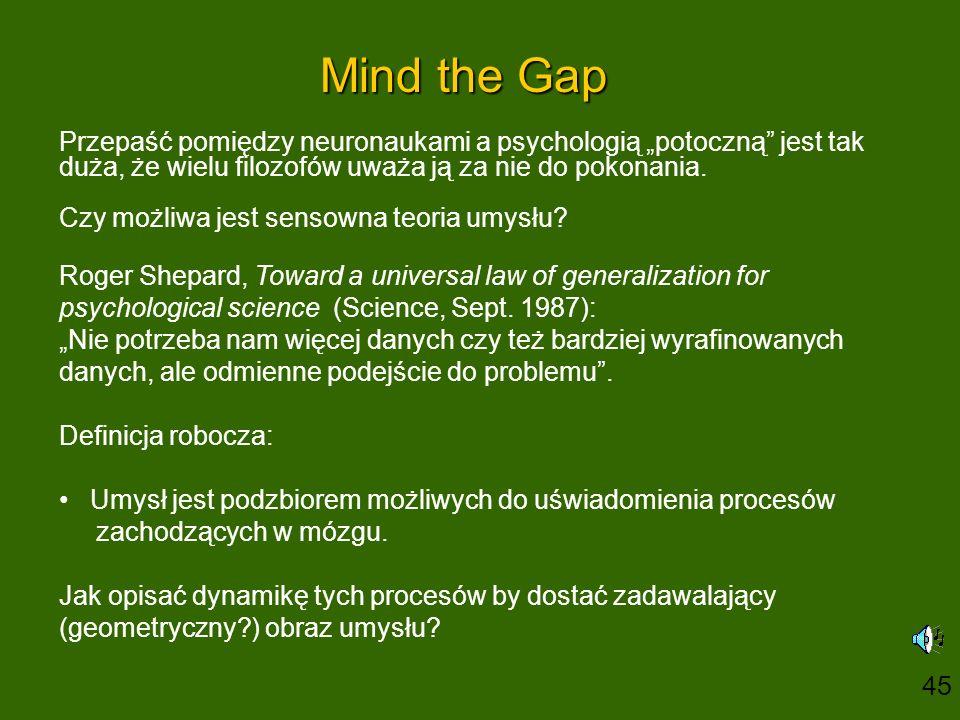"""Mind the Gap Przepaść pomiędzy neuronaukami a psychologią """"potoczną jest tak duża, że wielu filozofów uważa ją za nie do pokonania."""