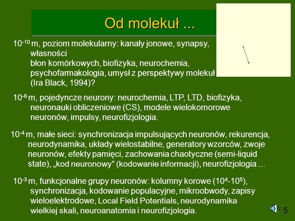 Od molekuł... 10 -10 m, poziom molekularny: kanały jonowe, synapsy, własności błon komórkowych, biofizyka, neurochemia, psychofarmakologia, umysł z pe