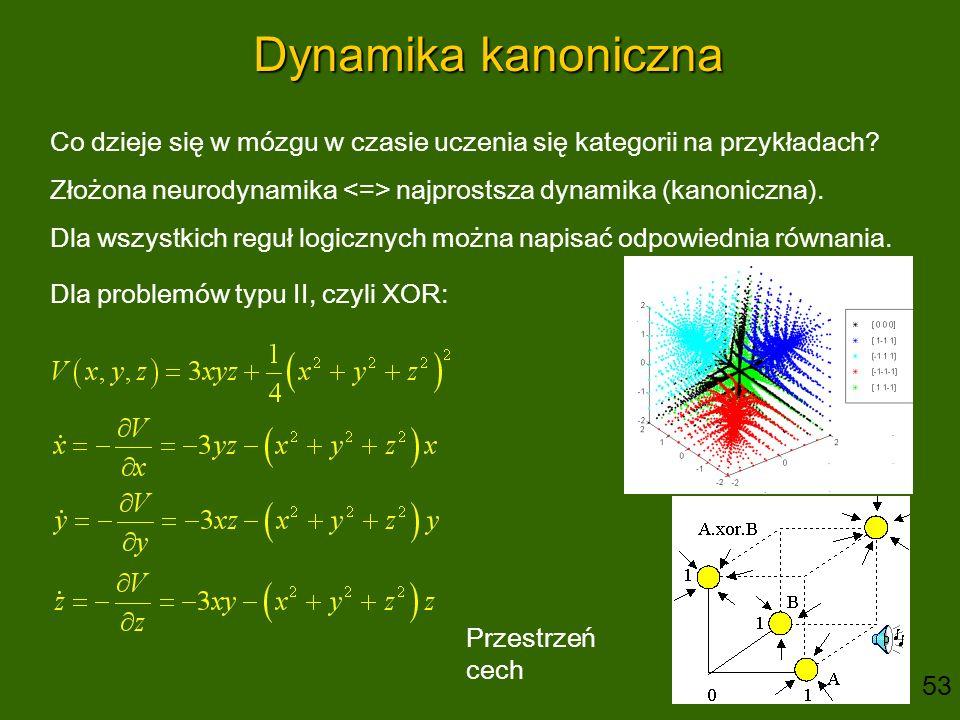 Dynamika kanoniczna Co dzieje się w mózgu w czasie uczenia się kategorii na przykładach? Złożona neurodynamika najprostsza dynamika (kanoniczna). Dla