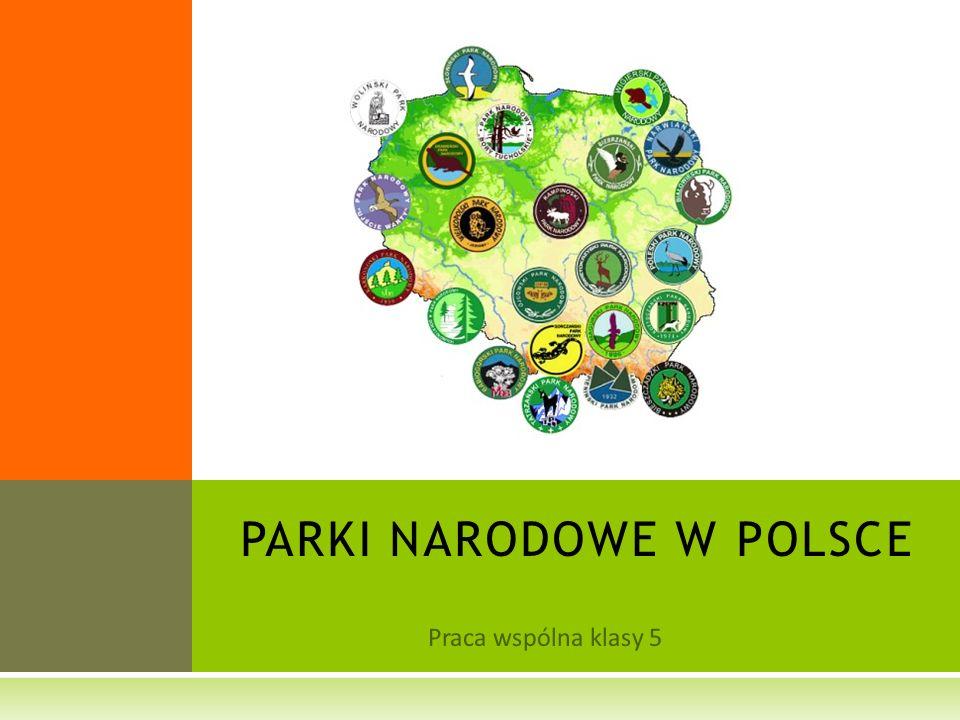 Praca wspólna klasy 5 PARKI NARODOWE W POLSCE