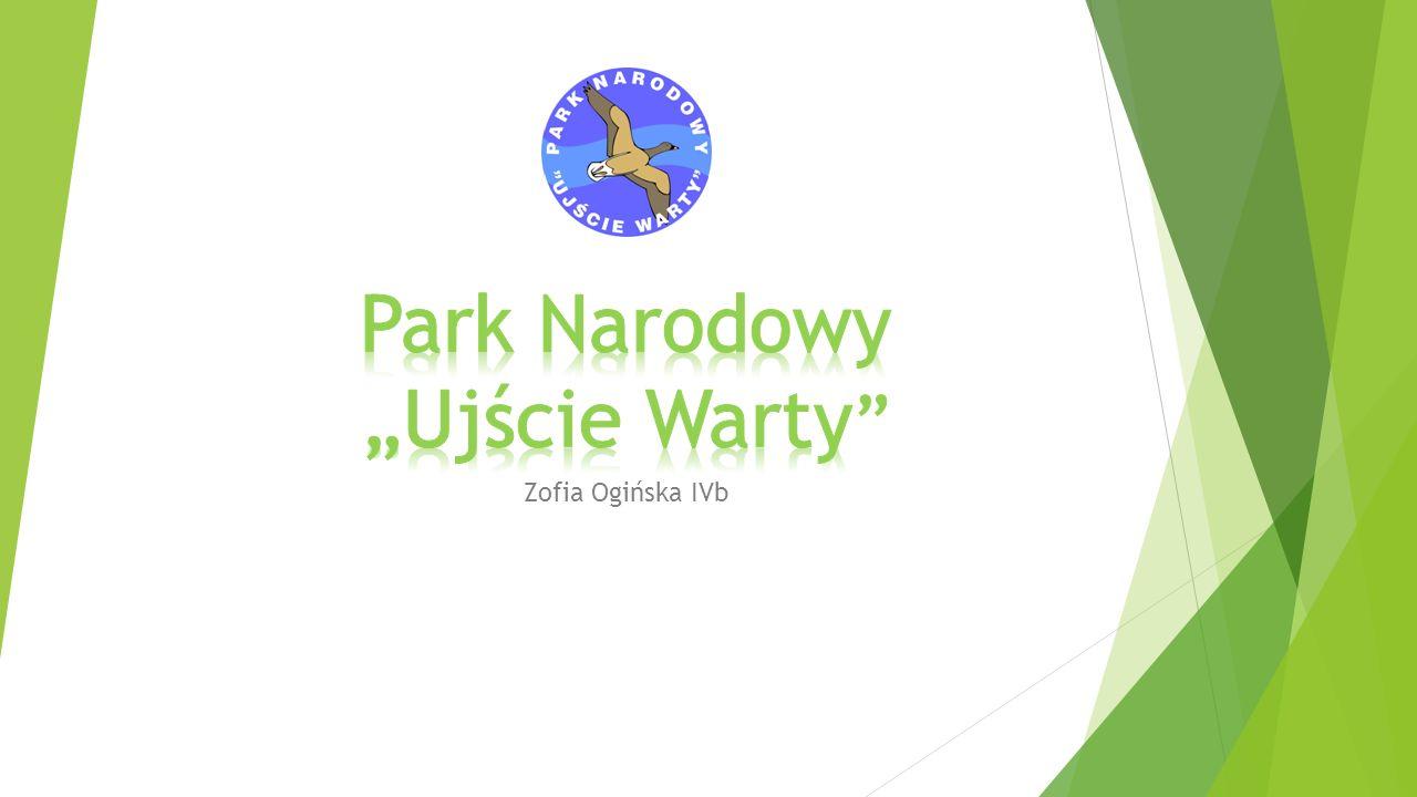 """ Park Narodowy """"Ujście Warty - Najmłodszy z 23 parków narodowych na terenie Polski."""