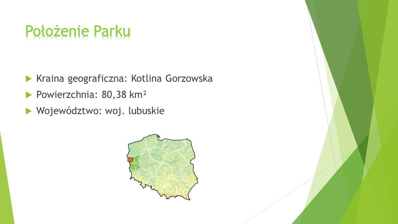  Kraina geograficzna: Kotlina Gorzowska  Powierzchnia: 80,38 km²  Województwo: woj. lubuskie