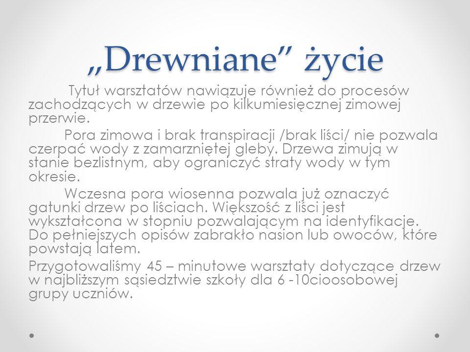 """""""Drewniane życie c.d."""