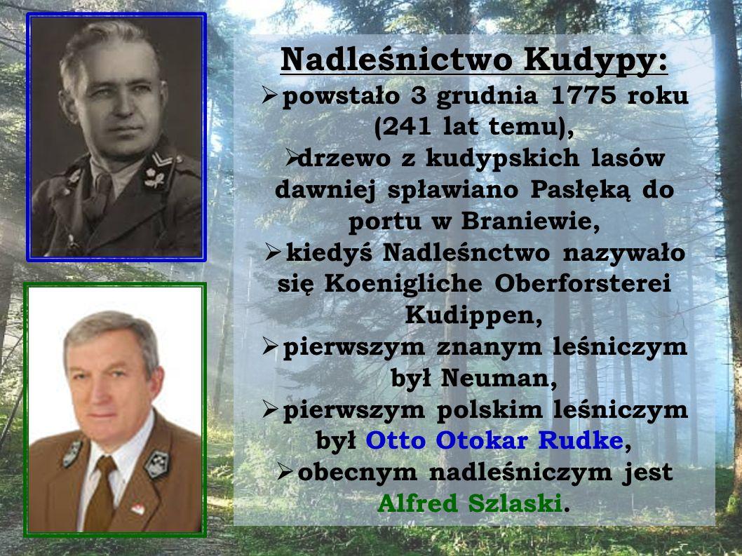 Nadleśnictwo Kudypy:  powstało 3 grudnia 1775 roku (241 lat temu),  drzewo z kudypskich lasów dawniej spławiano Pasłęką do portu w Braniewie,  kiedyś Nadleśnctwo nazywało się Koenigliche Oberforsterei Kudippen,  pierwszym znanym leśniczym był Neuman,  pierwszym polskim leśniczym był Otto Otokar Rudke,  obecnym nadleśniczym jest Alfred Szlaski.