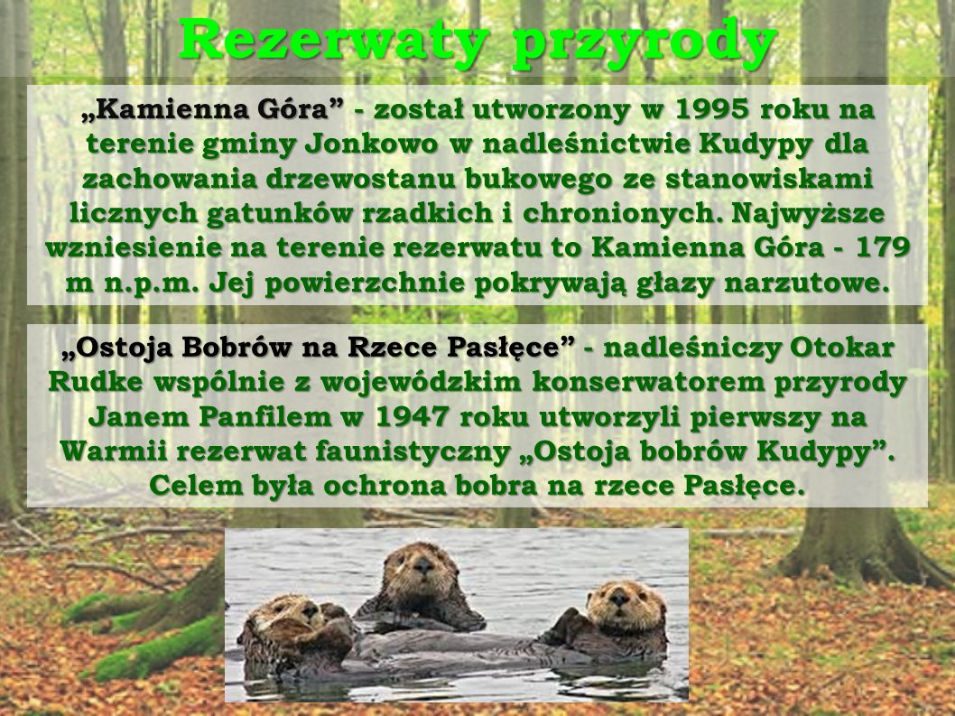 Inne oazy dla rzadkich roślin i zwierząt Obecnie na terenie Nadleśnictwa, poza rezerwatami, istnieją również obszary chronione:  Obszar Chronionego Krajobrazu Doliny Pasłęki,  Obszar Chronionego Krajobrazu Doliny Środkowej Łyny,  Obszary Natura 2000 - Dolina Pasłęki, Rzeka Pasłęka, Warmińskie Buczyny, Jonkowo- Warkały.