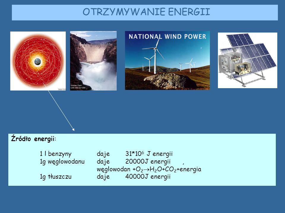 Źródło energii: 1 l benzyny daje31*10 6 J energii 1g węglowodanudaje 20000J energii, węglowodan +O 2  H 2 O+CO 2 +energia 1g tłuszczudaje 40000J energii OTRZYMYWANIE ENERGII