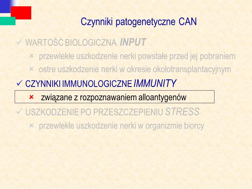 Czynniki patogenetyczne CAN WARTOŚĆ BIOLOGICZNA INPUT  przewlekłe uszkodzenie nerki powstałe przed jej pobraniem  ostre uszkodzenie nerki w okresie okołotransplantacyjnym CZYNNIKI IMMUNOLOGICZNE IMMUNITY  związane z rozpoznawaniem alloantygenów USZKODZENIE PO PRZESZCZEPIENIU STRESS  przewlekłe uszkodzenie nerki w organizmie biorcy
