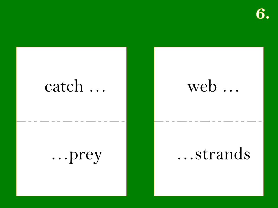 catch … …prey web … …strands