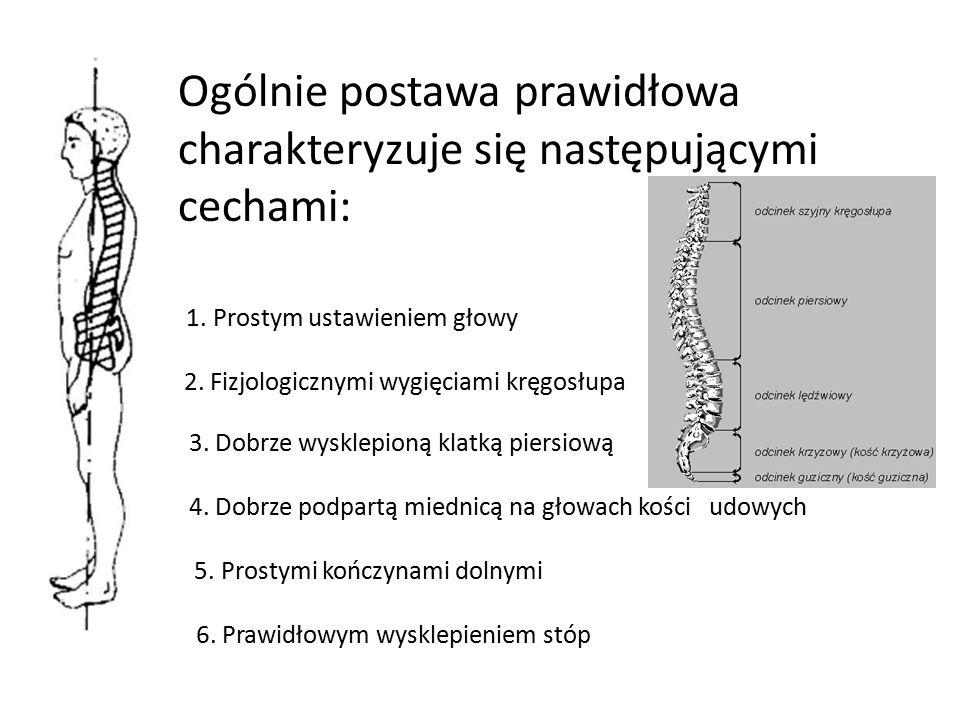Ogólnie postawa prawidłowa charakteryzuje się następującymi cechami: 1. Prostym ustawieniem głowy 2. Fizjologicznymi wygięciami kręgosłupa 3. Dobrze w