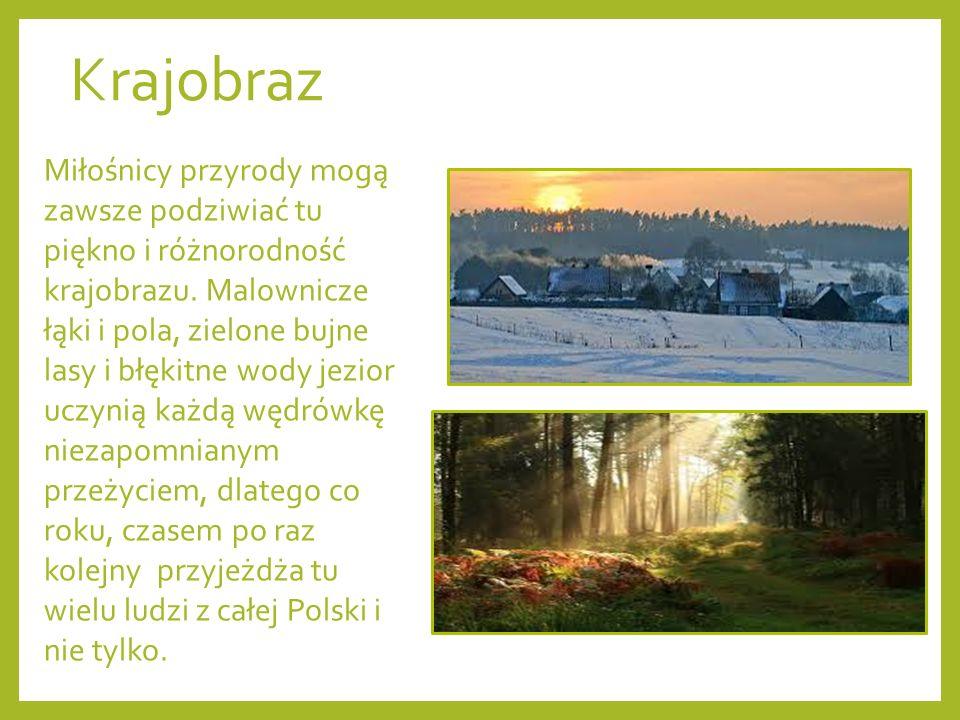 Krajobraz Miłośnicy przyrody mogą zawsze podziwiać tu piękno i różnorodność krajobrazu.
