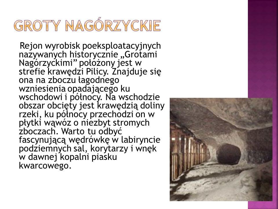 """Rejon wyrobisk poeksploatacyjnych nazywanych historycznie """"Grotami Nagórzyckimi położony jest w strefie krawędzi Pilicy."""