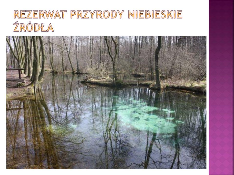 Ośrodek zajmuje pow.72,4 ha. Leży w strefie ochronnej Spalskiego Parku Krajobrazowego.