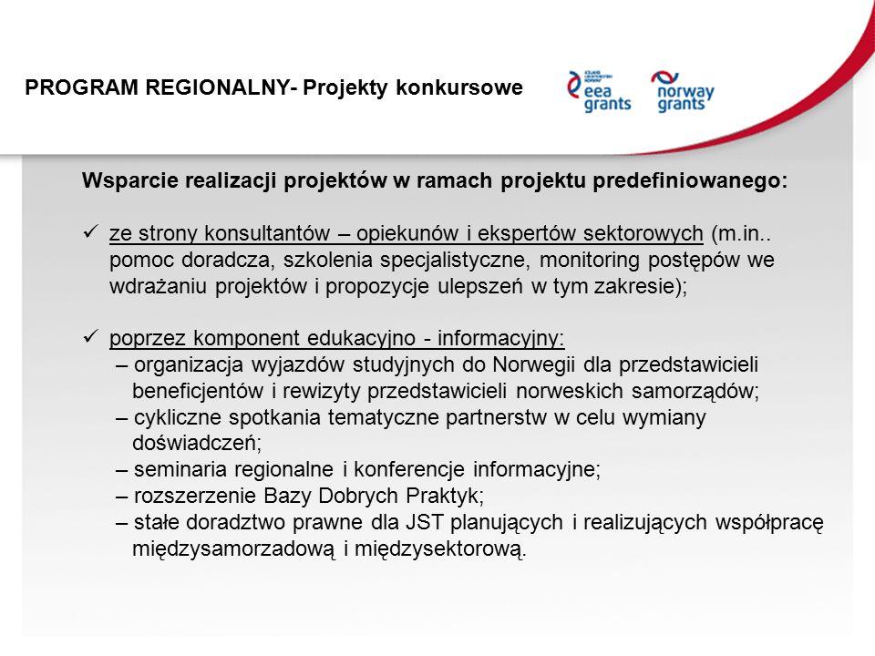 Wsparcie realizacji projektów w ramach projektu predefiniowanego: ze strony konsultantów – opiekunów i ekspertów sektorowych (m.in..