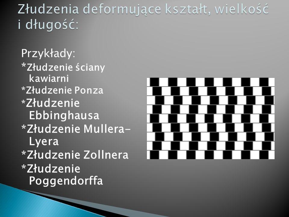 Przykłady: * Złudzenie ściany kawiarni *Złudzenie Ponza * Złudzenie Ebbinghausa *Złudzenie Mullera- Lyera *Złudzenie Zollnera *Złudzenie Poggendorffa