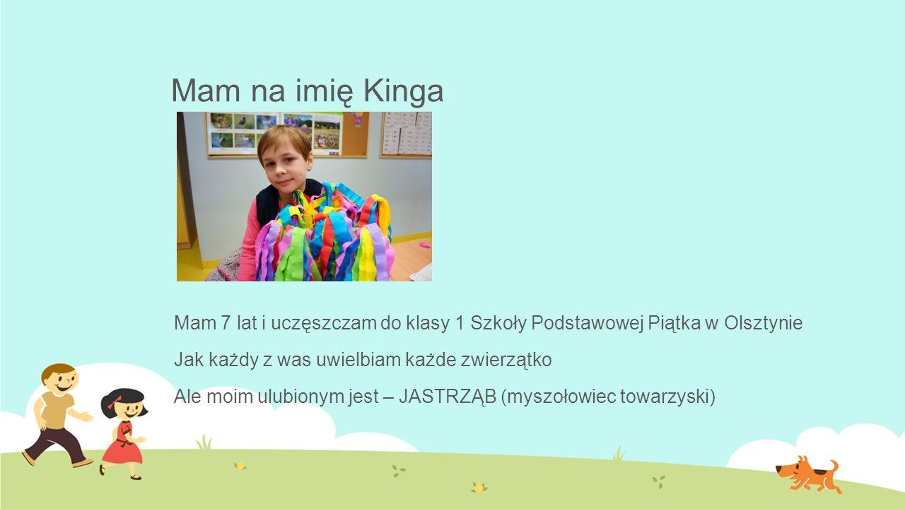 Mam na imię Kinga Mam 7 lat i uczęszczam do klasy 1 Szkoły Podstawowej Piątka w Olsztynie Jak każdy z was uwielbiam każde zwierzątko Ale moim ulubionym jest – JASTRZĄB (myszołowiec towarzyski)