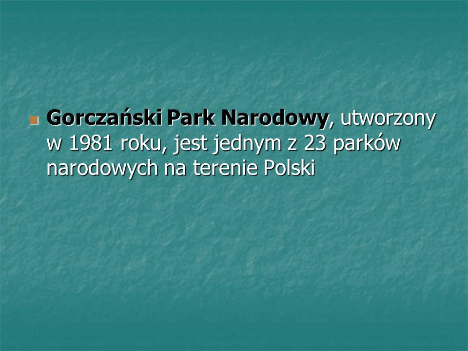 Gorczański Park Narodowy, utworzony w 1981 roku, jest jednym z 23 parków narodowych na terenie Polski Gorczański Park Narodowy, utworzony w 1981 roku,