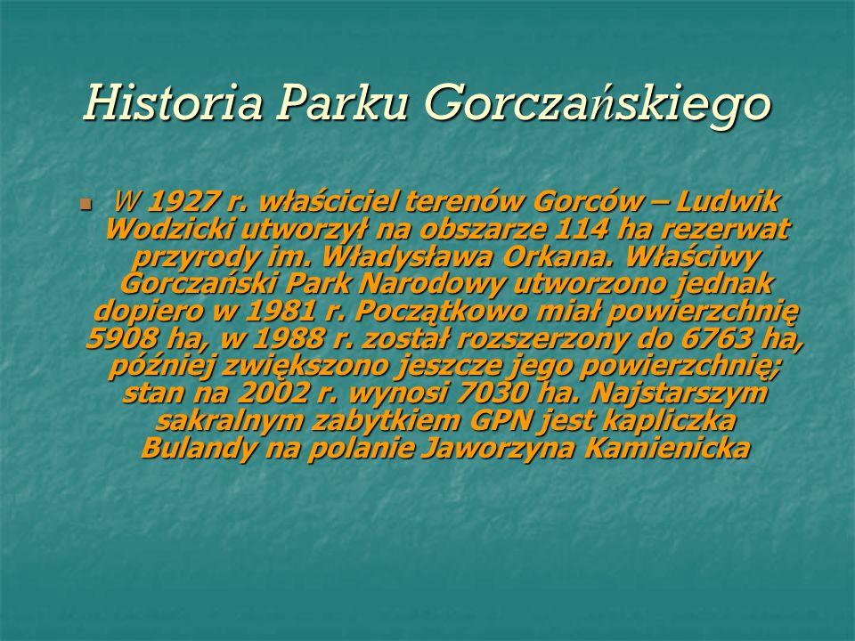 Historia Parku Gorcza ń skiego W 1927 r. właściciel terenów Gorców – Ludwik Wodzicki utworzył na obszarze 114 ha rezerwat przyrody im. Władysława Orka
