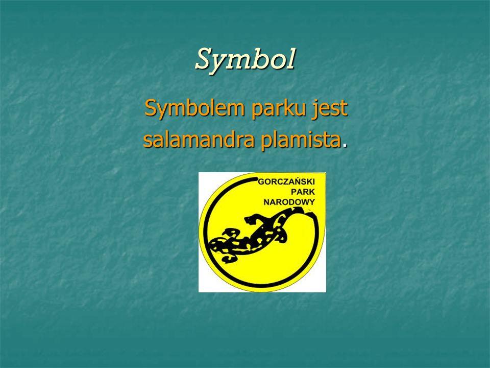 Symbol Symbolem parku jest salamandra plamista.