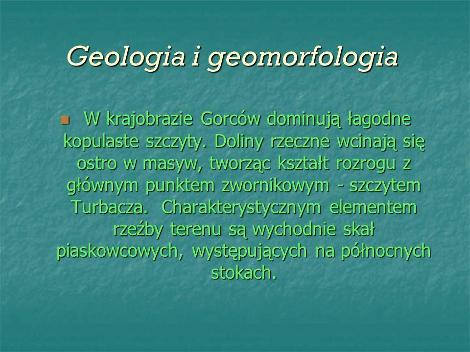 Geologia i geomorfologia Geologia i geomorfologia W krajobrazie Gorców dominują łagodne kopulaste szczyty. Doliny rzeczne wcinają się ostro w masyw, t