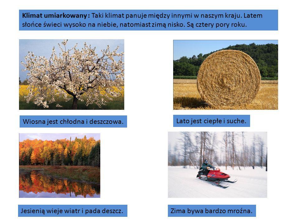 Klimat umiarkowany : Taki klimat panuje między innymi w naszym kraju.