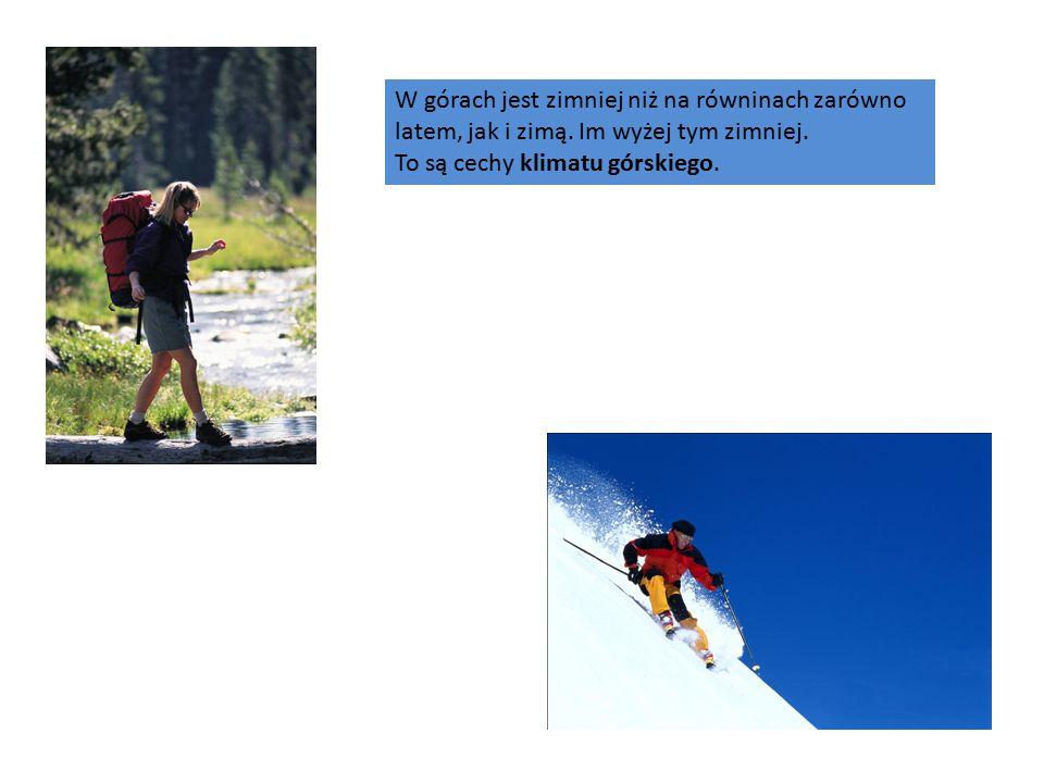 W górach jest zimniej niż na równinach zarówno latem, jak i zimą.